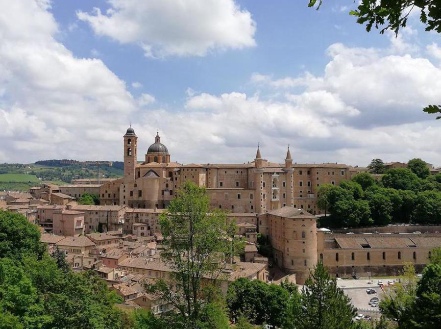 Guide Turistiche Urbino Prenotazione E Informazioni Visite
